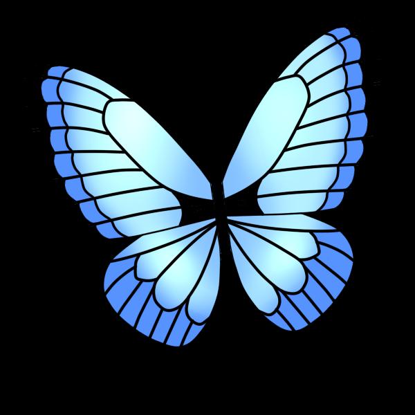 アゲハ蝶(青)