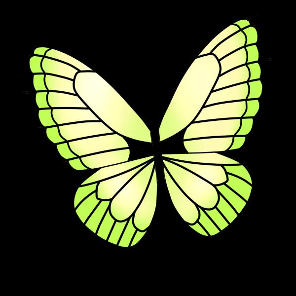 アゲハ蝶(黄)