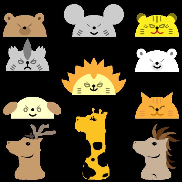 動物帽子セット