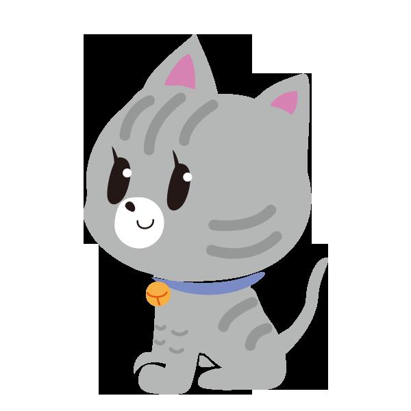 猫 グレイ