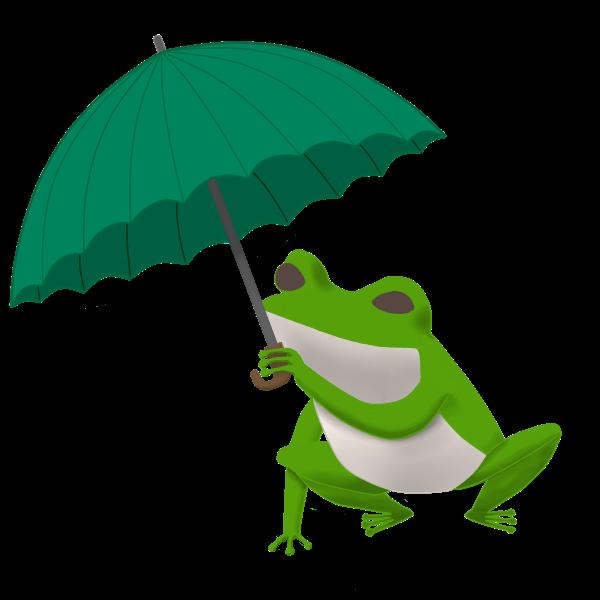 傘を持つカエル